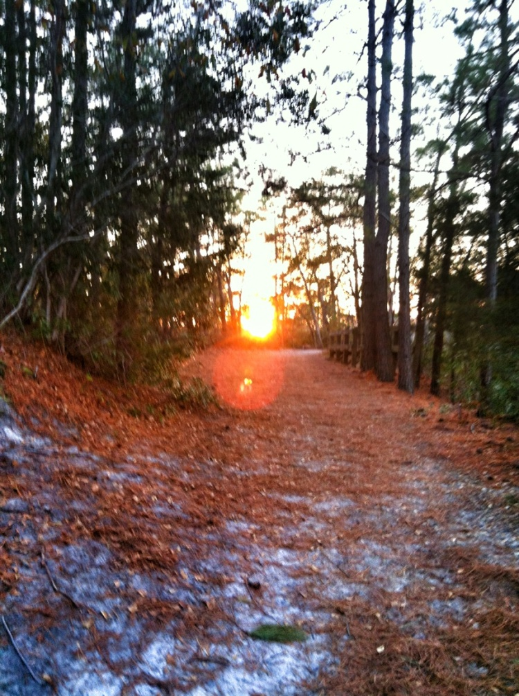 Setting Sun at mile 5