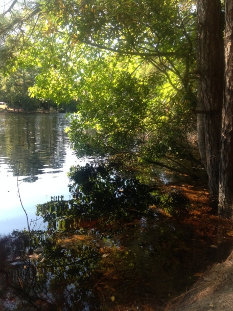 Lake Susan Constant